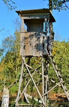 Free Tree Stand, Tree, Outdoor Structure, Outhouse Royalty Free Stock Photos - 113241418