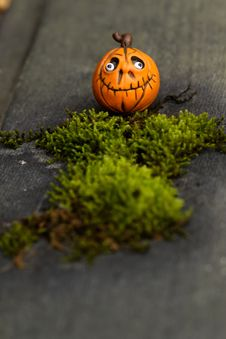 Free Pumpkin, Grass, Orange, Halloween Royalty Free Stock Photography - 113241837