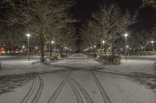 Free Cleared Road Near Trees And Light Post During Nighttime Royalty Free Stock Photo - 113295265