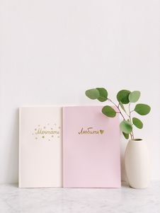 Free Green Leaf Plant Beside Two Pink And White Notebooks Royalty Free Stock Image - 113349646