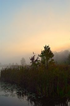 Free Dawn, Sky, Morning, Sunrise Royalty Free Stock Photo - 113373285