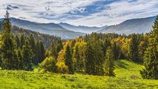 Free Nature, Ecosystem, Wilderness, Nature Reserve Stock Photo - 113373380
