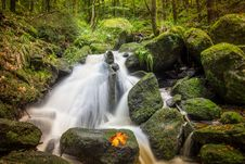 Free Water, Nature, Waterfall, Stream Royalty Free Stock Images - 113374069