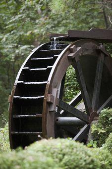 Free Iron, Grass, Tree, Wheel Royalty Free Stock Photos - 113374268