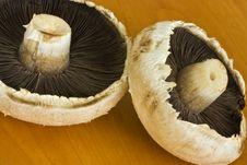 Free Fresh Mushrooms Stock Photo - 11349420