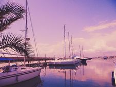 Free Photo Of Sailboats On The Water Stock Image - 113416971