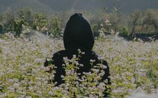 Free Photo Of Person Wearing Black Hoodie Standing On Flower Field Stock Image - 113417041