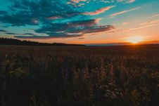Free Scenic View Of The Field During Sunset Stock Photo - 113540130