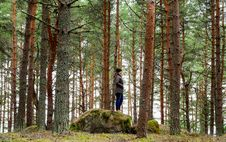 Free Woman On Rock Surrounded Pine Trees Royalty Free Stock Images - 113641989