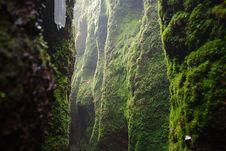 Free Vegetation, Green, Nature, Nature Reserve Royalty Free Stock Photos - 113648248