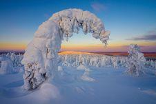 Free Sky, Freezing, Arctic Ocean, Arctic Stock Photo - 113648460