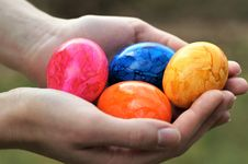 Free Easter Egg, Egg Royalty Free Stock Image - 113659526