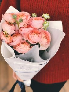 Free Person Wearing Red Sweater And Black Pants Holding Bouquet Of Pink Flowers Stock Images - 113809034