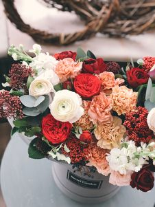 Free White, Red, Orange, And Brown Flowers Stock Photography - 113809042