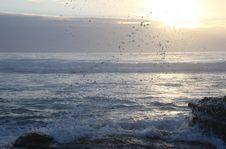 Free Ocean Waves Hammering Rock Boulder Stock Image - 113809231