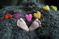 Free Baby S Feet Covered With Black Wool Textile Stock Photo - 113907680
