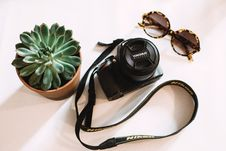 Free Black Nikon Dslr Camera Beside Green Succulent Plant Stock Photography - 113907992