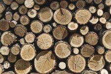 Free Photography Of Woodpile Stock Image - 113947541