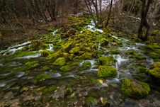 Free Flowing River And Moss Covered Rocks Stock Image - 113947691