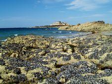 Maritime Landscape Stock Photography