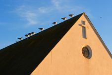 Free Seagulls On Church Roof Royalty Free Stock Images - 1143559