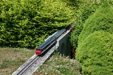 Free Model Of Train Between Miniature Firs Stock Image - 1144401
