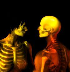Bone Couple 5 Stock Images