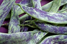Free Big Green Bean-pods Royalty Free Stock Images - 1145009