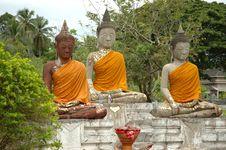 Buddhas Stock Image