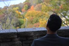 Free Back View Of A Man Overlooking Autumn Treetops Royalty Free Stock Photo - 114021465