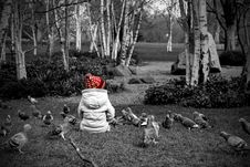 Free Selective Colour Photography Of Toddler Sitting On Grass Next To Pigeons Royalty Free Stock Photos - 114443068