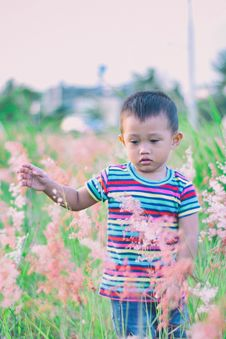 Free Boy Walking On Bush-covered Field Selective Focus Photo Stock Photography - 114510962