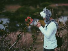 Free Man Wearing Grey Wolf Critter Cap Taking A Photo Of Pink Hibiscus Flower Stock Images - 114603054