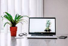 Free Photo Of Laptop Near Plant Royalty Free Stock Image - 114603106