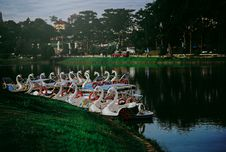 Free Photo Of Swan Boats Near The Shore Stock Images - 114603114