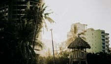 Free Photo Of Buildings Near Palm Trees Royalty Free Stock Photo - 114603125