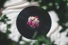 Free Photography Of Flowers On Top Of Vinyl Record Royalty Free Stock Photo - 114603255