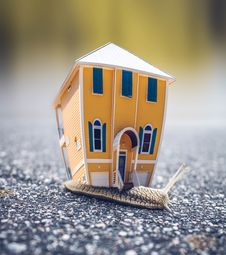 Free Microphotography Of Orange And Blue House Miniature On Brown Snail S Back Stock Images - 114603344