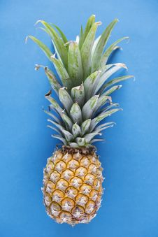 Free Photography Of Pineapple On Blue Background Royalty Free Stock Photos - 114603368