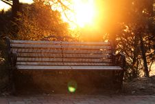 Free Brown Metal-framed Bench Surrounded By Trees Stock Photos - 114677473
