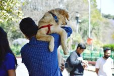 Free Man In Blue Long-sleeved Shirt Carrying Dog Stock Photo - 114677690