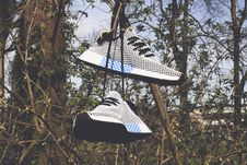 Free Pair Of White Low-top Shoes Hanging On Tree Royalty Free Stock Photo - 114677795