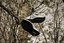 Free Pair Of Grey Low-top Sneakers Hanged On Tree Stock Image - 114677851