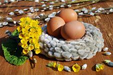 Free Egg, Bird Nest, Easter Egg Stock Photography - 114712792