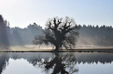 Free Reflection, Water, Nature, Mist Royalty Free Stock Images - 114713309