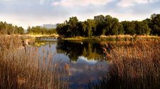 Free Reflection, Water, Nature, Nature Reserve Royalty Free Stock Photography - 114714247