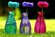 Free Flower, Purple, Glass Bottle, Vase Stock Images - 114714324