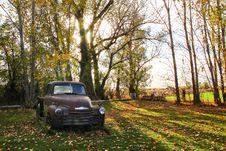 Free Classic Brown Single Cab Pickup Truck Parked Next To Tall Trees Royalty Free Stock Images - 114750909