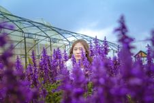 Free Woman Standing Behind Purple Petaled Flowers Royalty Free Stock Image - 114750936