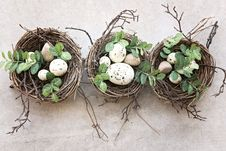 Free Bird Nest, Nest, Egg, Twig Stock Images - 114791074